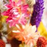 Beautiful Autumn Flowers Stock Photo C Shebeko 167448448