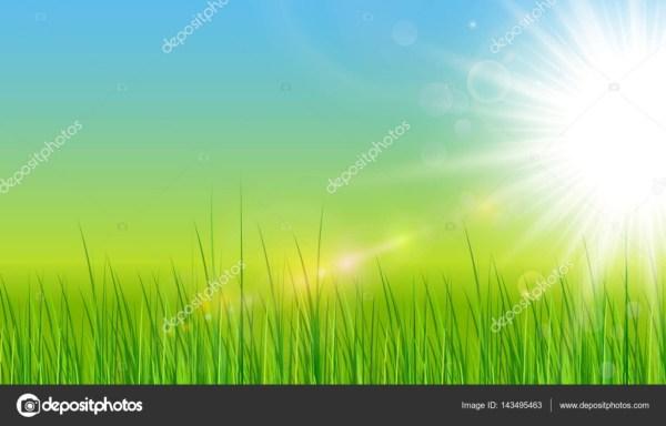 Fond vert avec le soleil et l'herbe — Image vectorielle ...