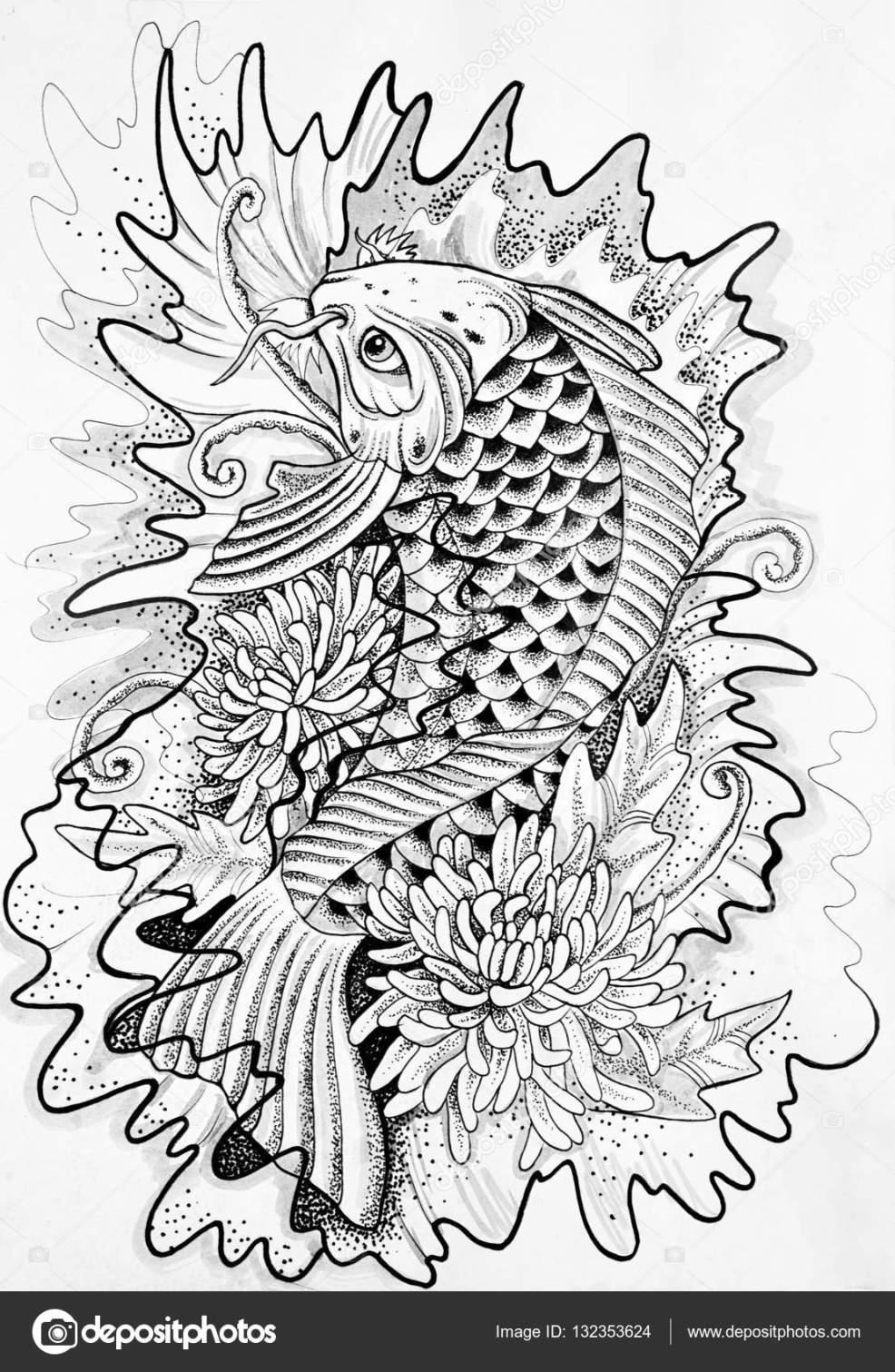 рисунок японский карп эскиз японский карп белый фон стоковое