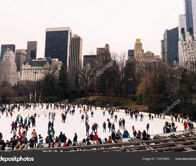 New York Central Park In Christmas Time Stock Photo