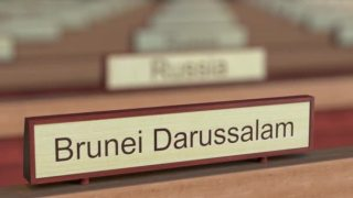 Image result for Brunei name