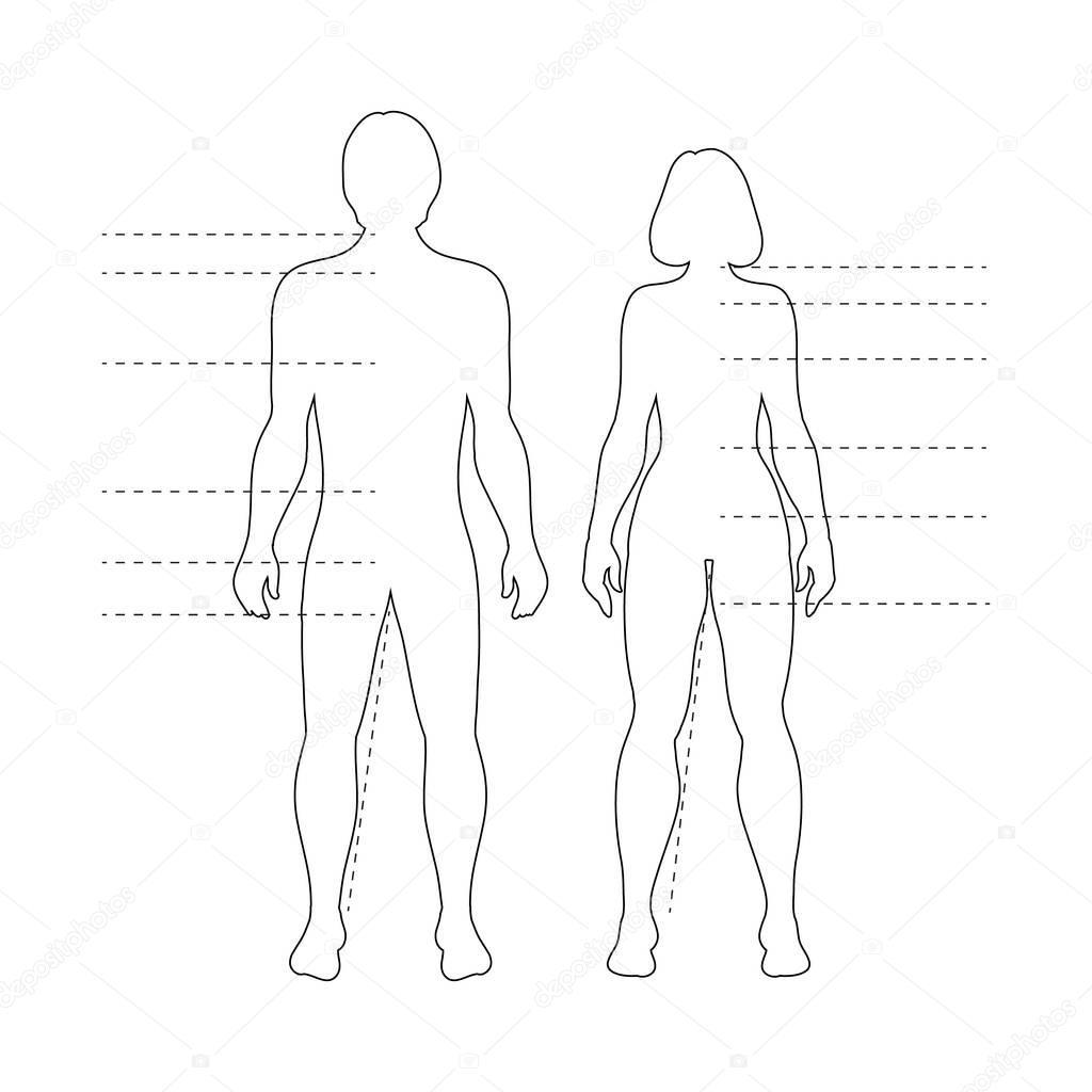 Man Vrouw Menselijk Lichaam Silhouetten Met Pointers
