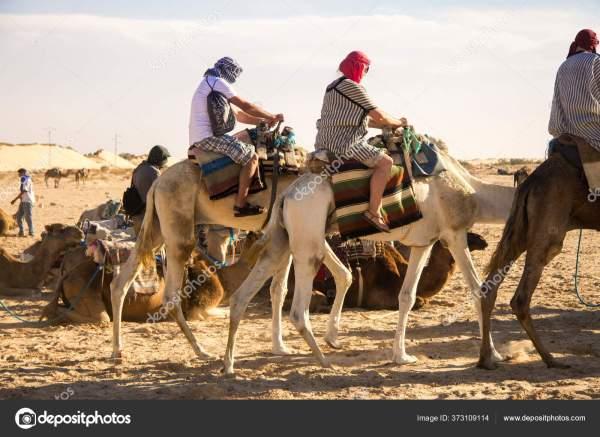 Группа Туристов Верблюде Прогуливающемся Пескам Пустыни ...