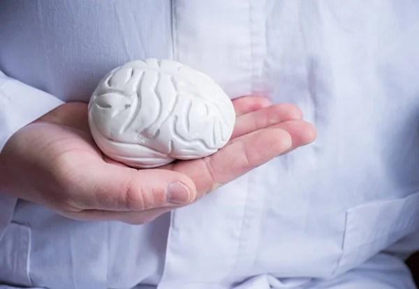 Человеческий Мозг Прикрыт Руками — Стоковое фото © sqback ...