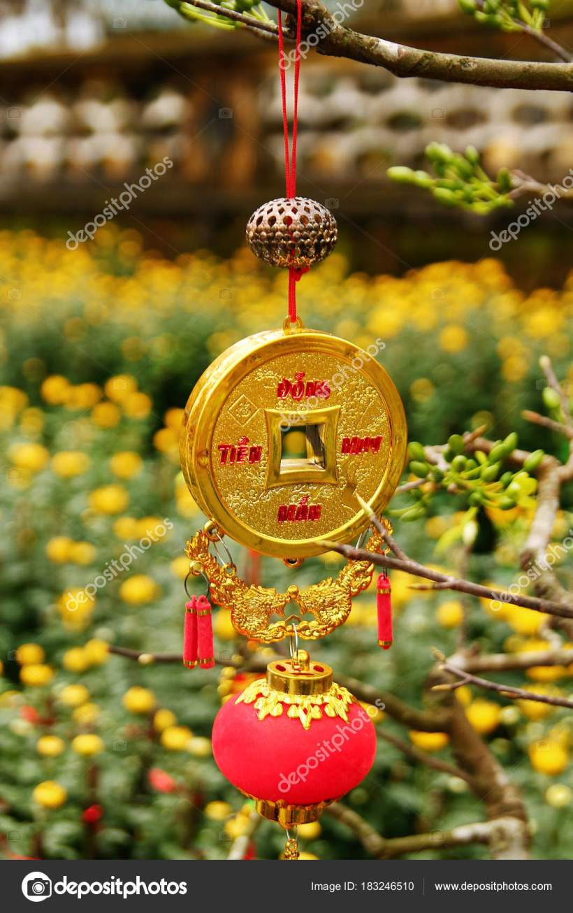 Vietnamese New Year Yellow Flower | Best Flower Site