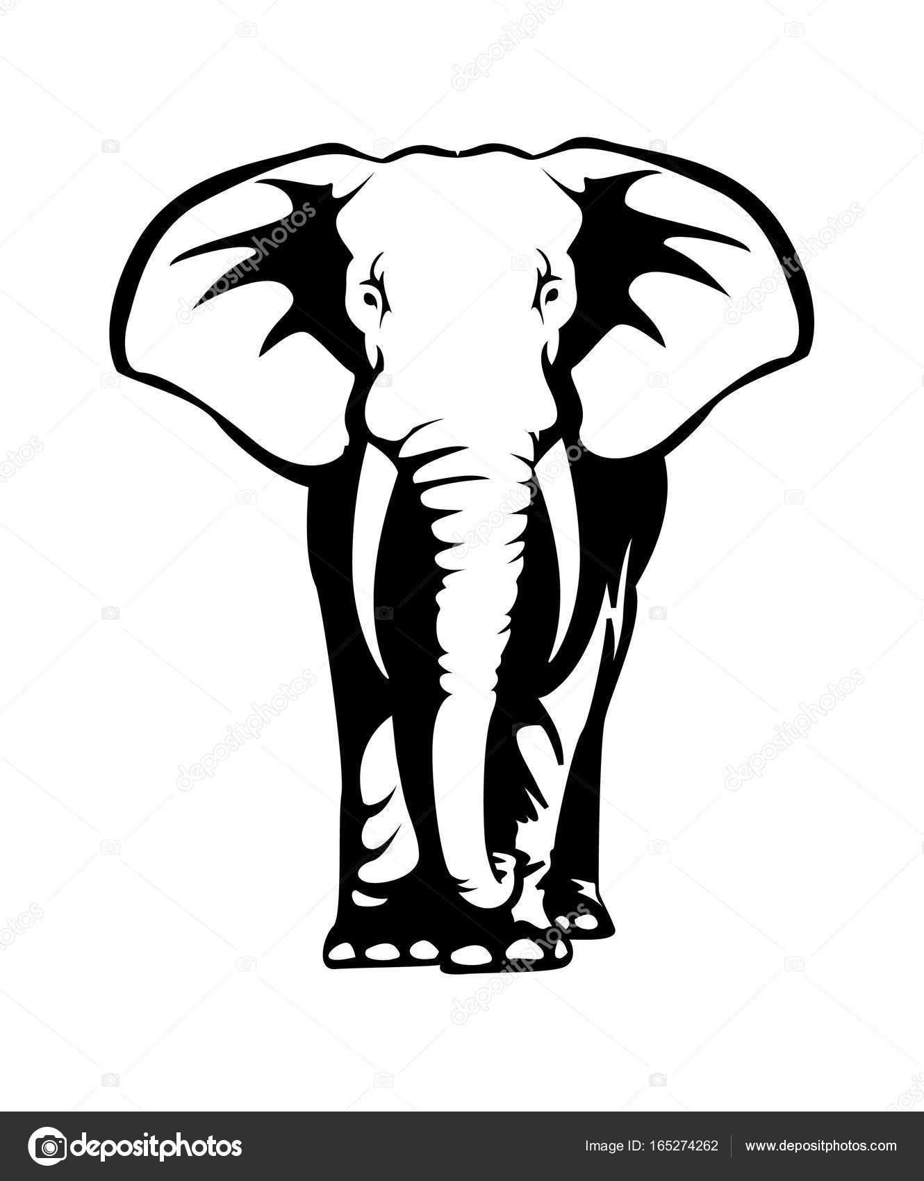 Olifant Tekening Illustratie