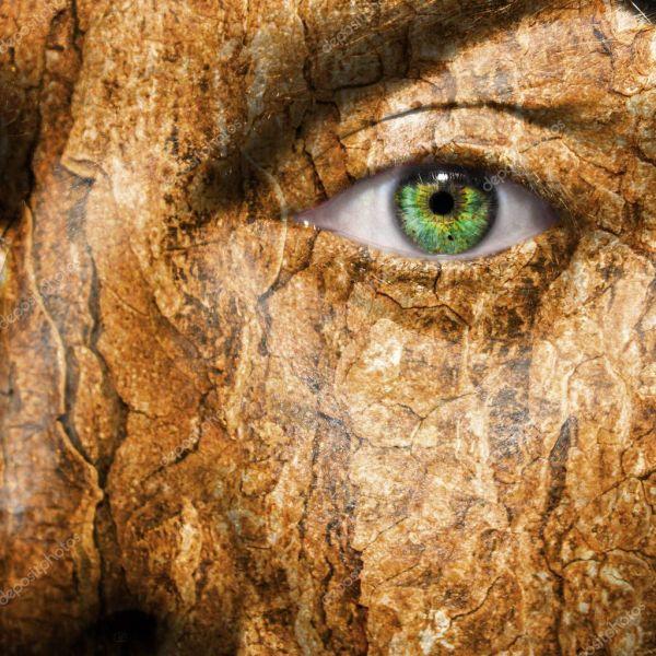 Концептуальное изображение лица с кожей, кора — Стоковое ...