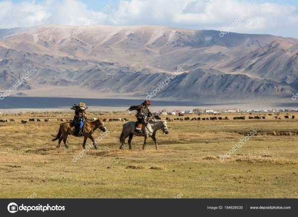 Сагсай Монголия Сентября 2017 Года Беркутчи Охотники Орлов ...