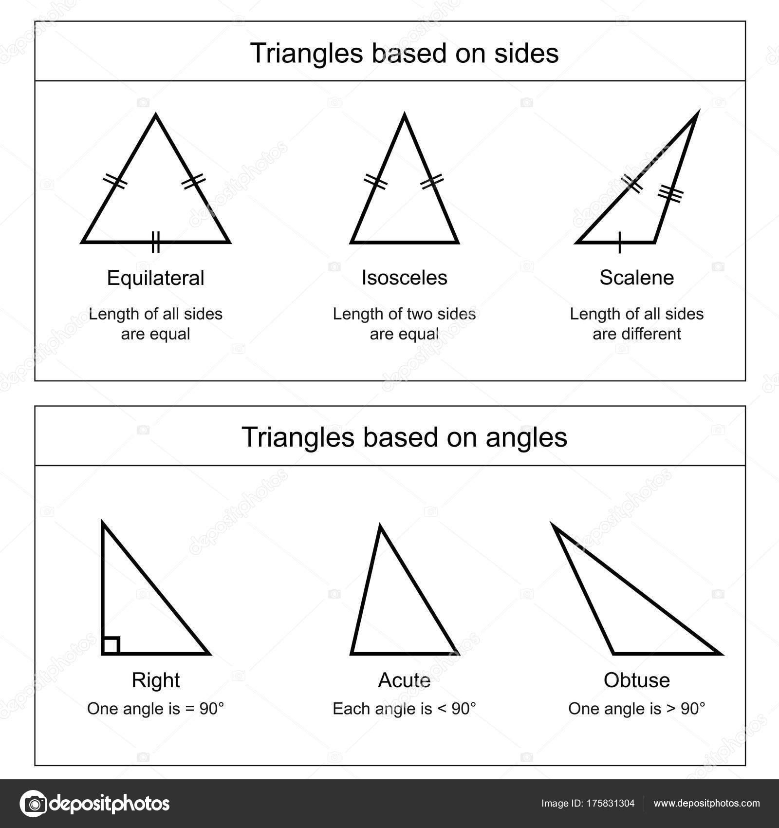 Types Triangles White Background Vector Illustration
