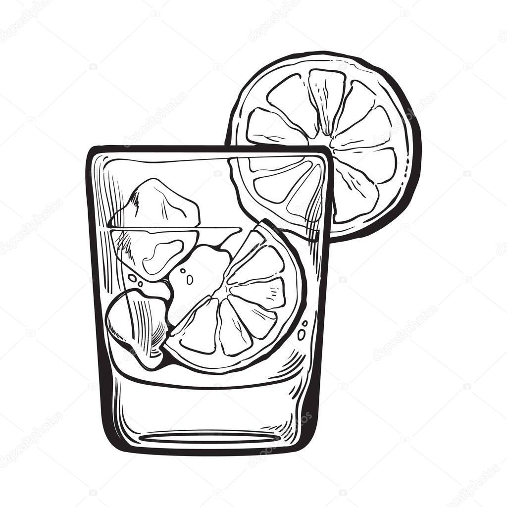 Copo De Gim Vodca Agua Com Gas Com Gelo E Limao