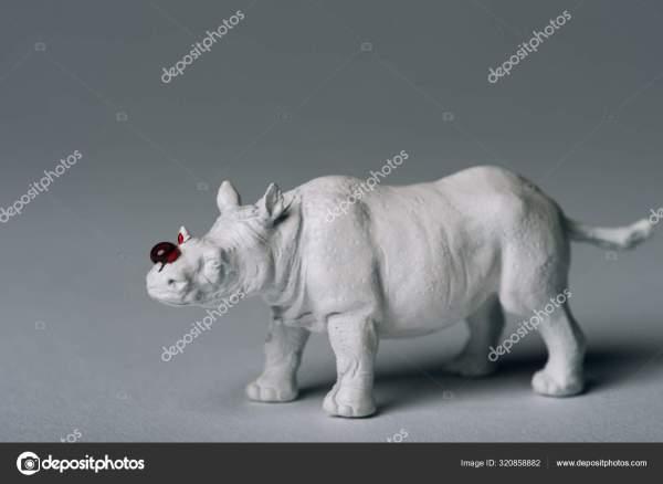 Белый Игрушечный Носорог Кровью Сером Фоне Охота Рога ...