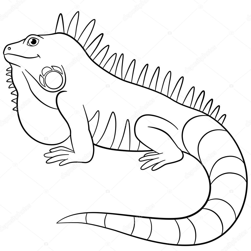 Coloring Pages Cute Iguana Smiles Stock Vector © Ya Mayka