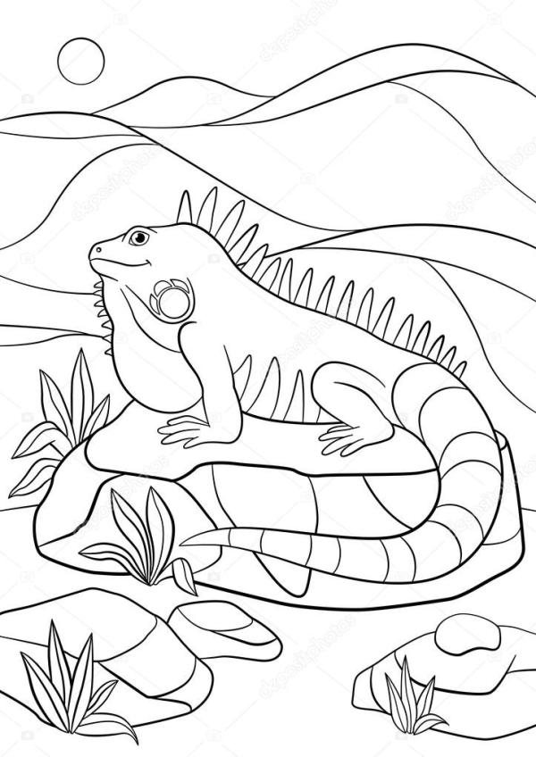 rock coloring pages # 58