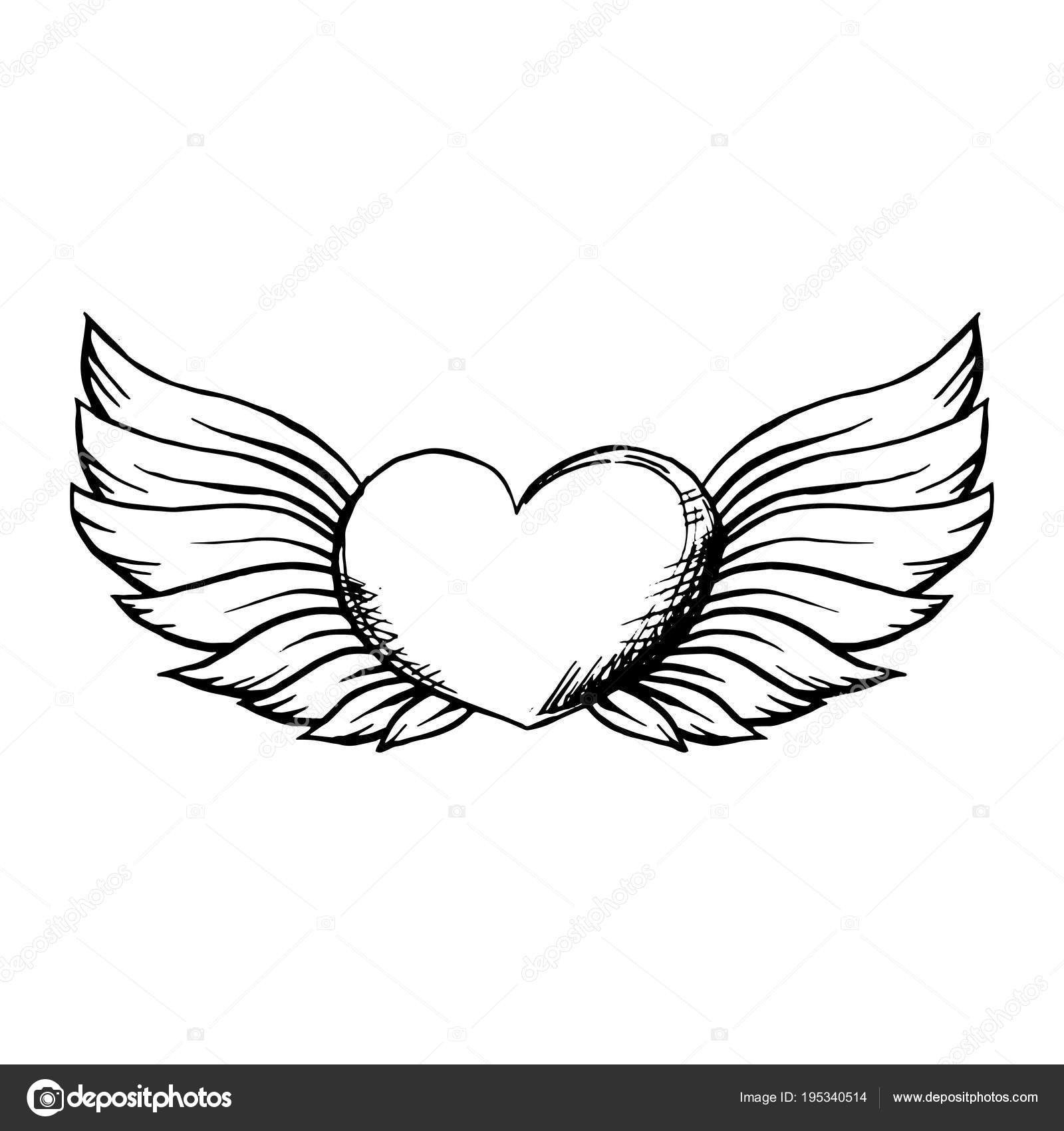 Heart Wings Sketch Style Isolated White Background Stock Vector C Ilonitta 195340514