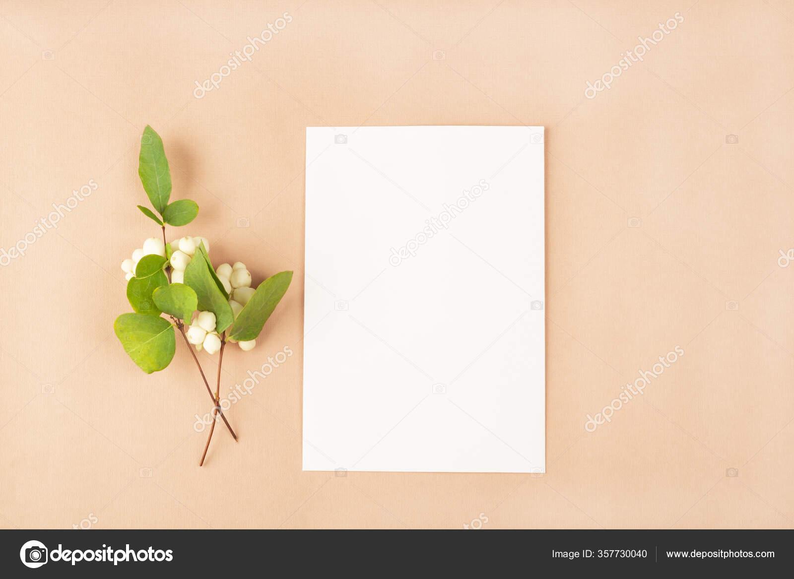 https depositphotos com 357730040 stock photo invitation card mockup template blank html