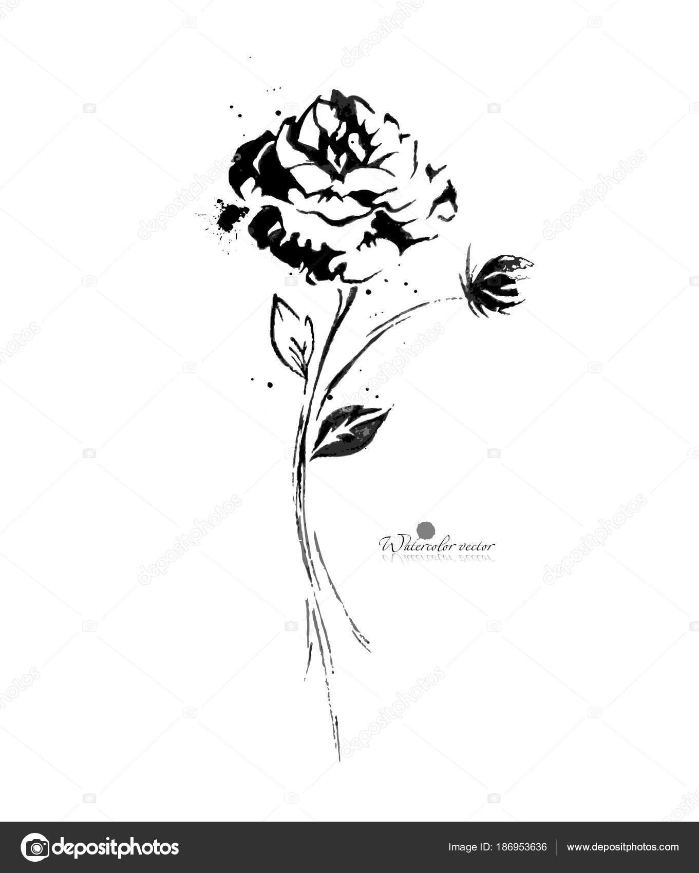 Fleur Noir Et Blanc