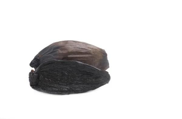 Три недавно найденным пестрые коричневый пекан — Стоковое ...