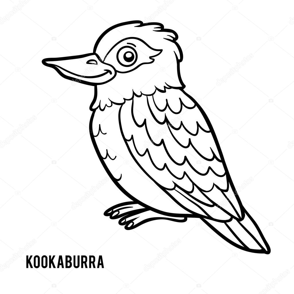 Coloring Book Kookaburra