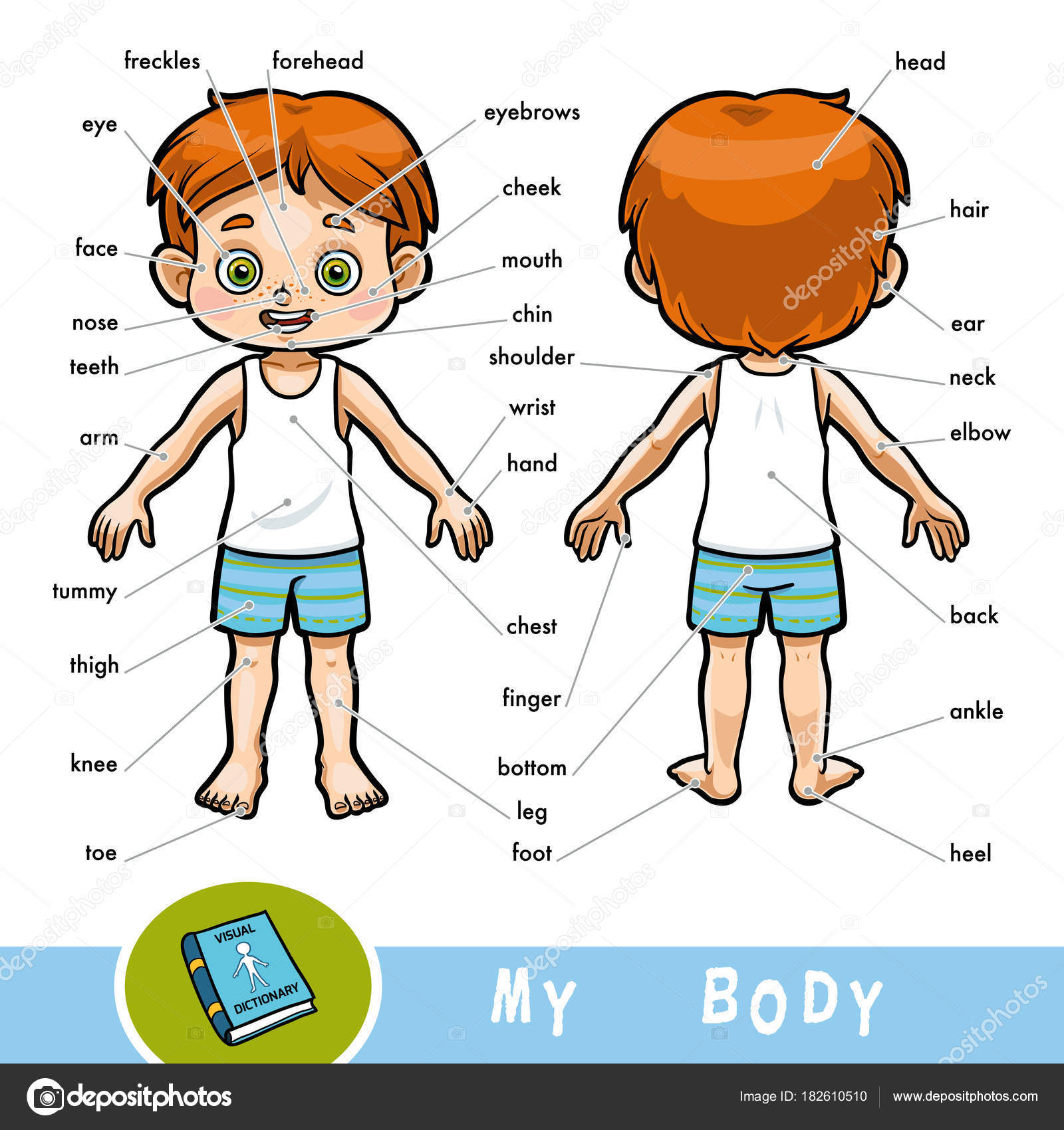 70 Worksheets For Kindergarten Parts Of The Body