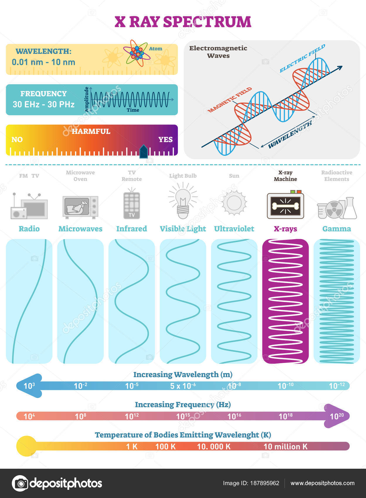 Electromagnetic Waves X Ray Wave Spectrum Vector