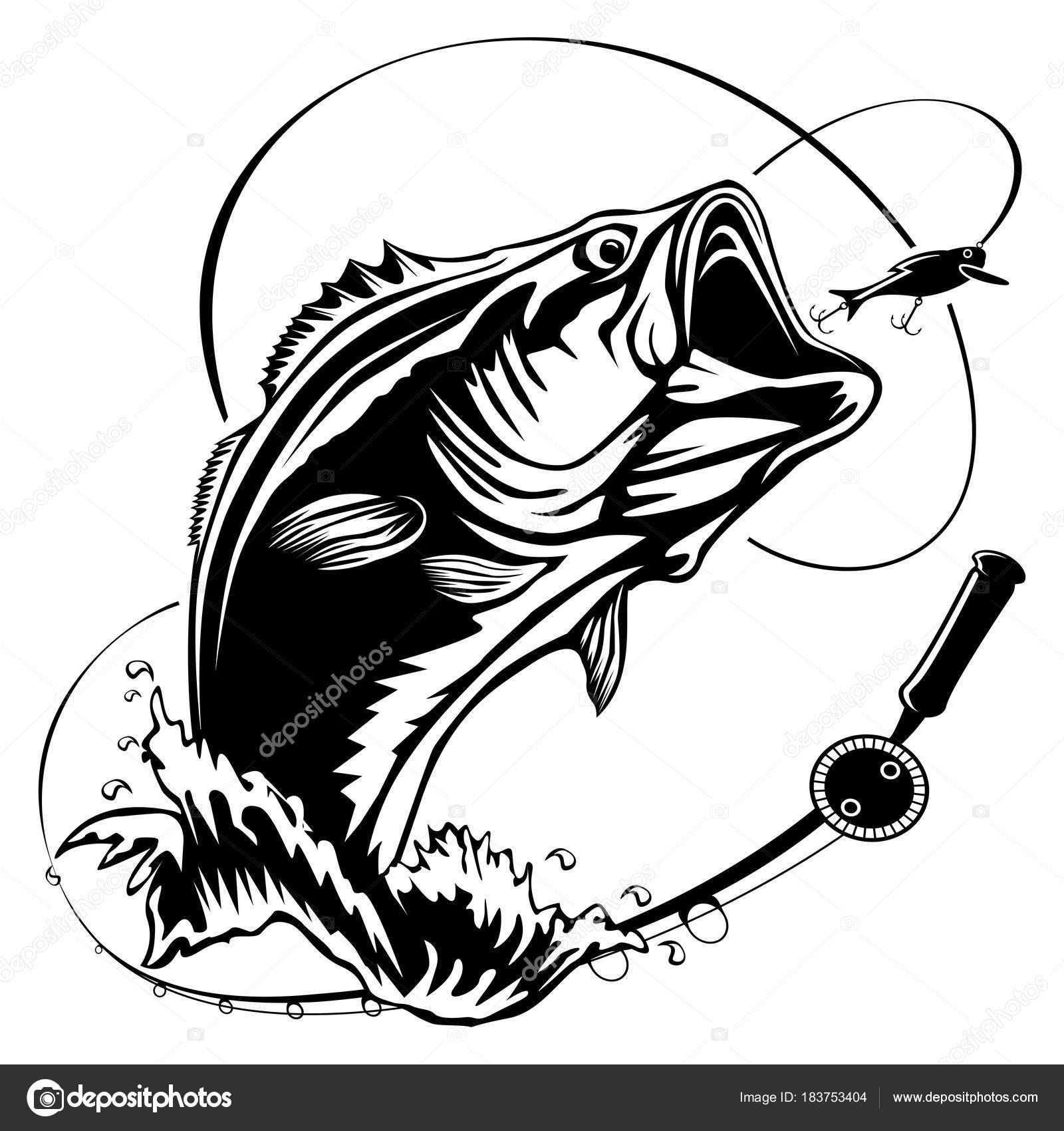 Fishing Bass Bigmouth
