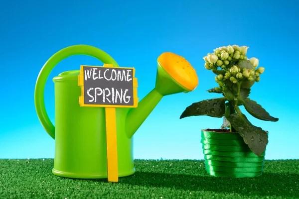 """Горшок-цветок со знаком """"Весна"""" — Стоковое фото © RamiF ..."""