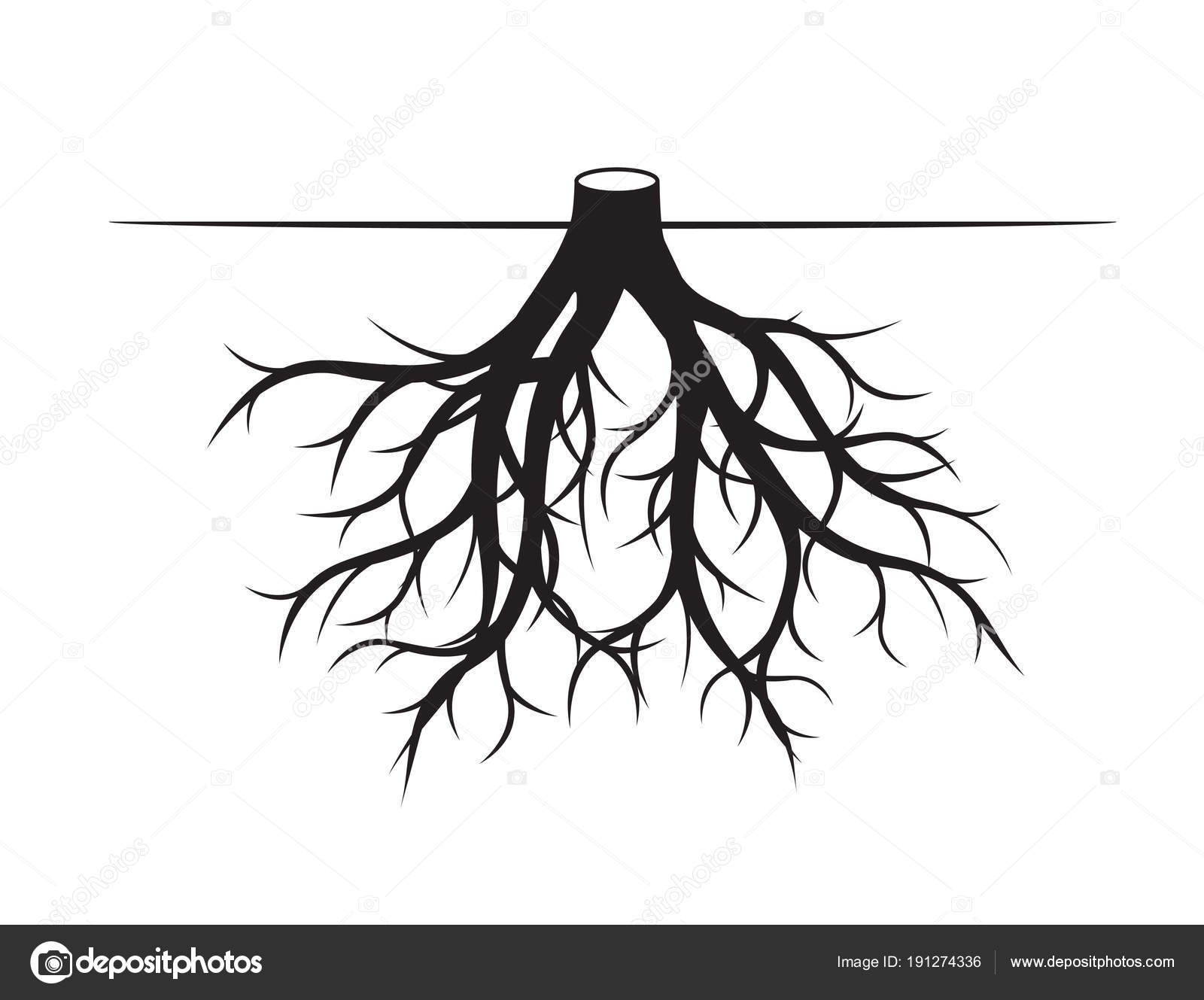 Black Roots Tree Vector Illustration