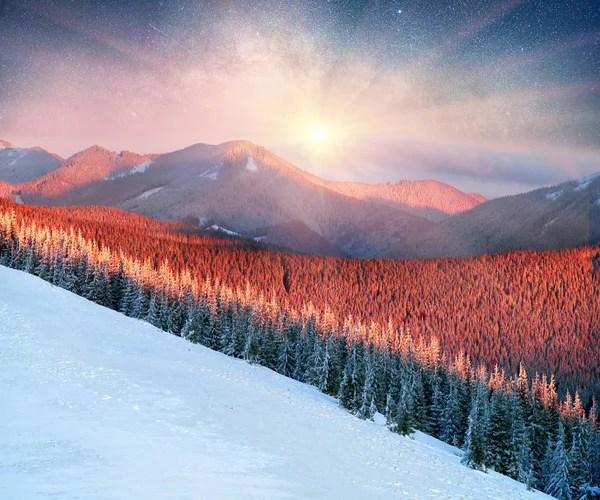 Морозний лісу в горах — Стокове фото © panaramka.ukr.net ...