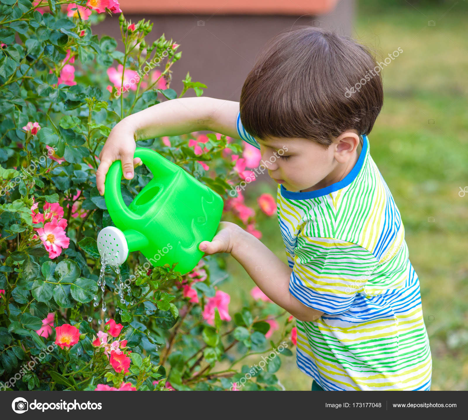 Cute Little Boy Watering Plants With Watering Can In The