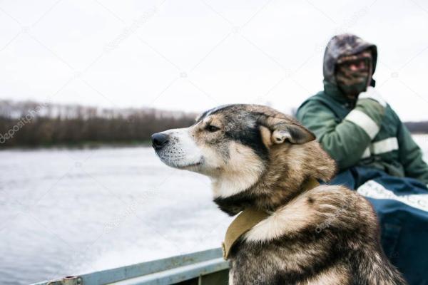 Misherman с собакой в лодке — Стоковое фото © Scharfsinn ...