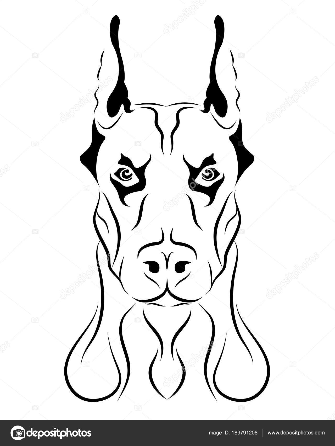 Dibujos De Perros Doberman Para Colorear