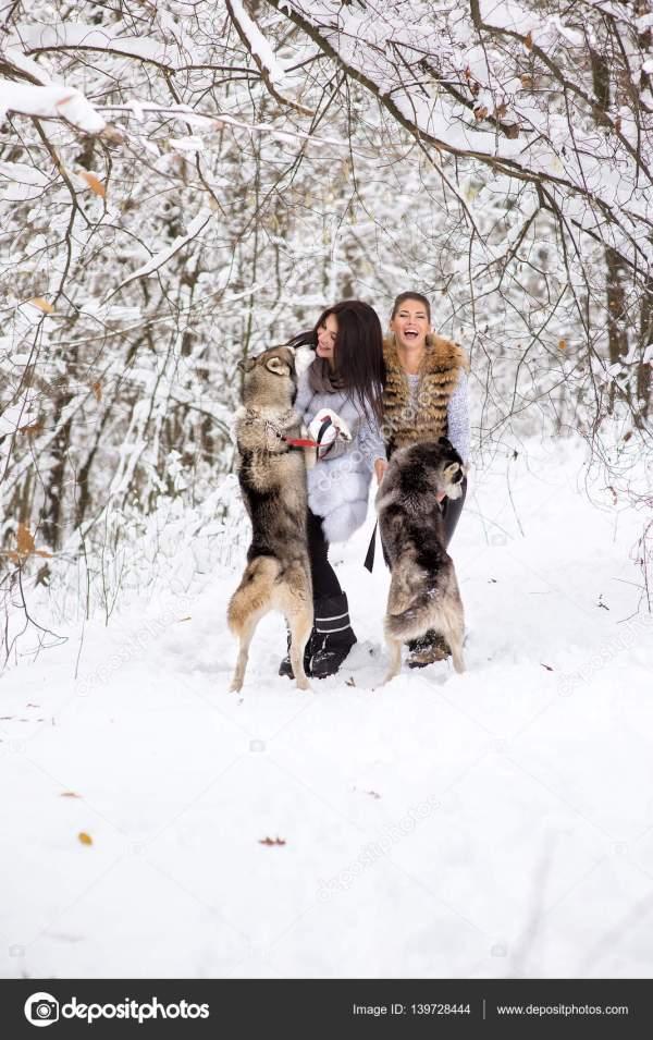 Две красивые девушки с хриплым хаски в зимнем лесу ...