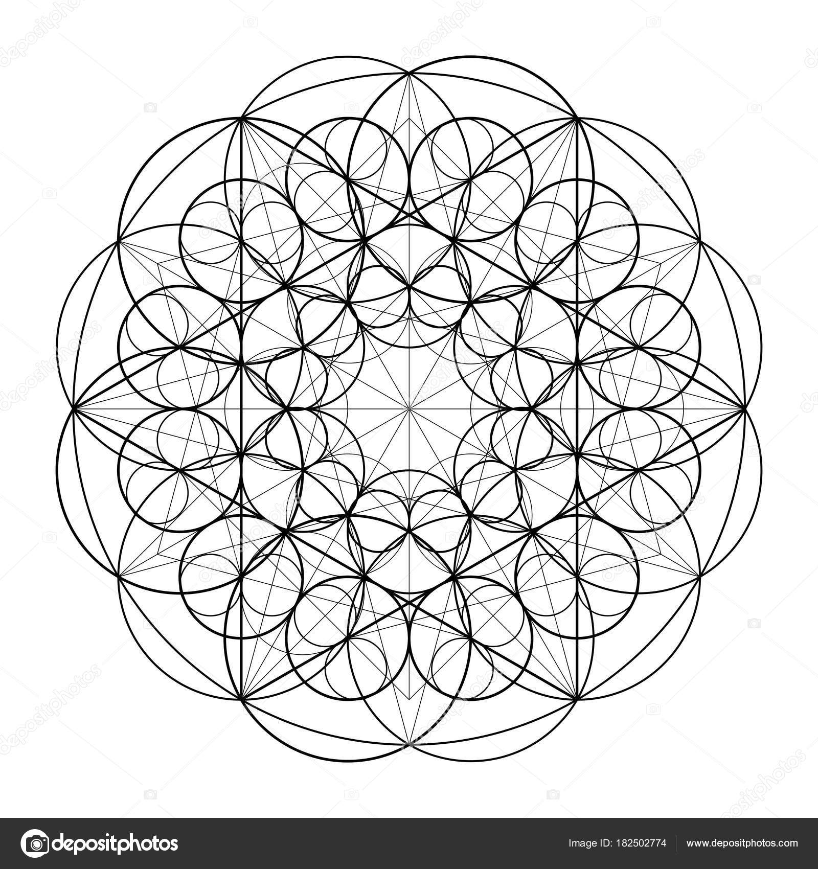 Ornament From Circles Geometric Pattern Based On The