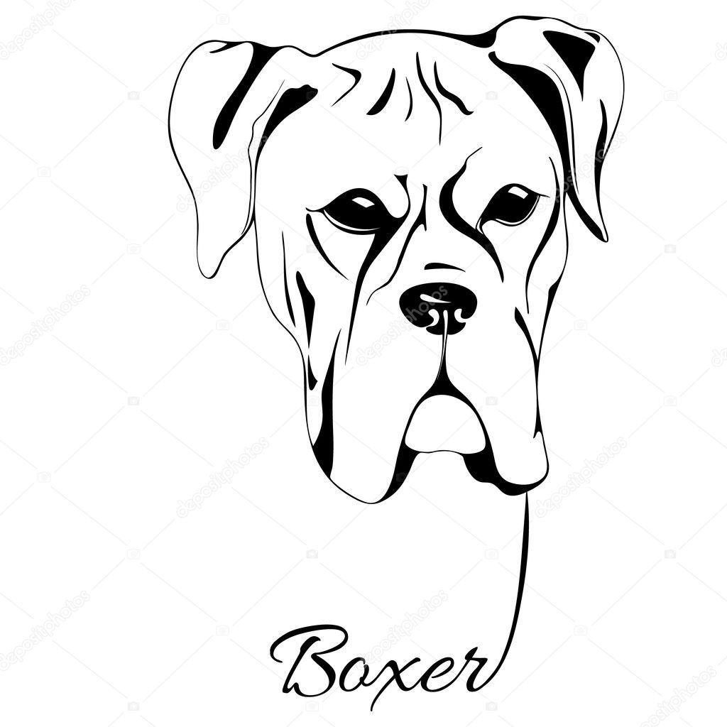 The Gallery For Gt Boxer Dog Outline