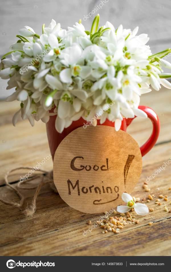 Красивые Картинки Цветы С Добрым Утром