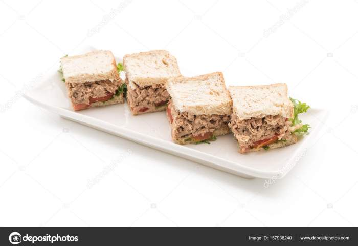 Tuna Sandwich On White Stock Photo Topntp 157938240