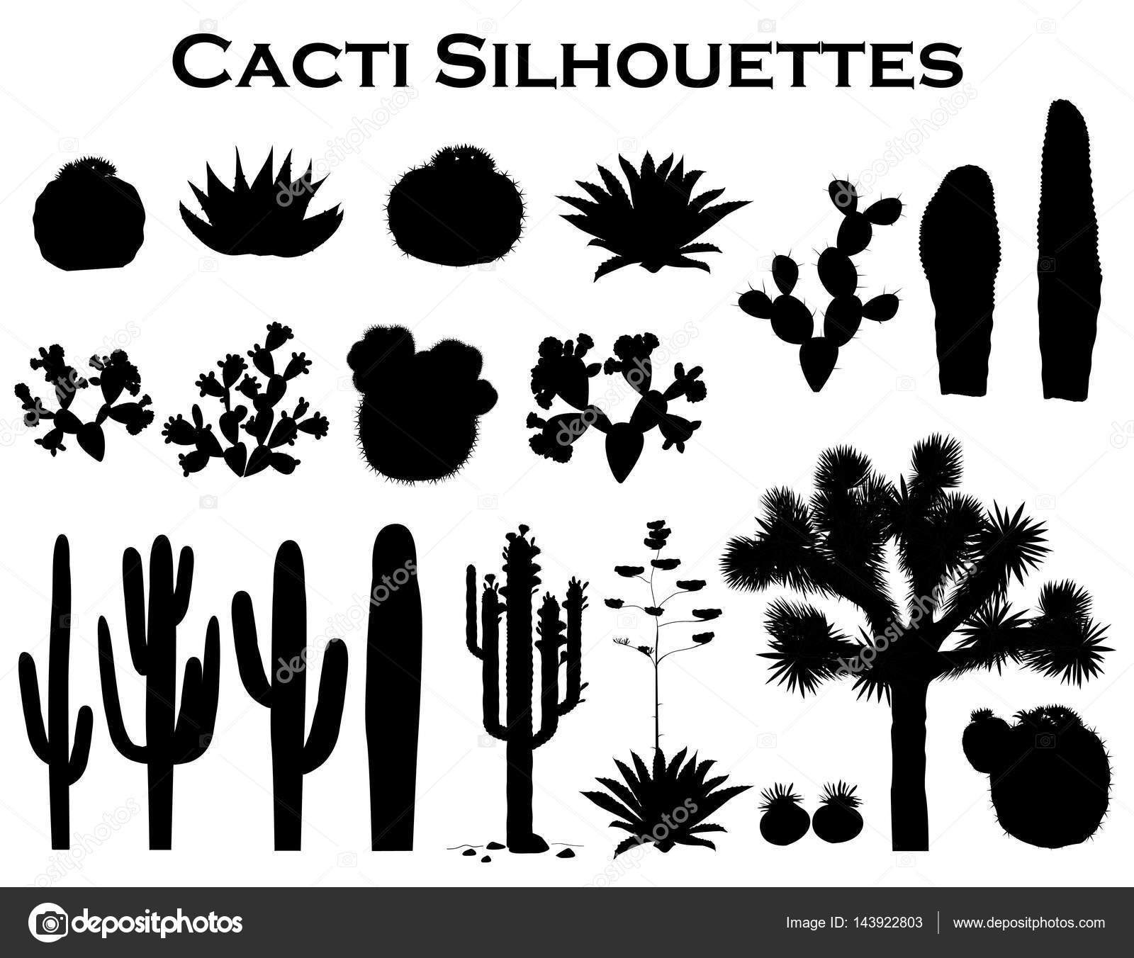 Black Silhouettes Of Cactuses Agave Joshua Tree And