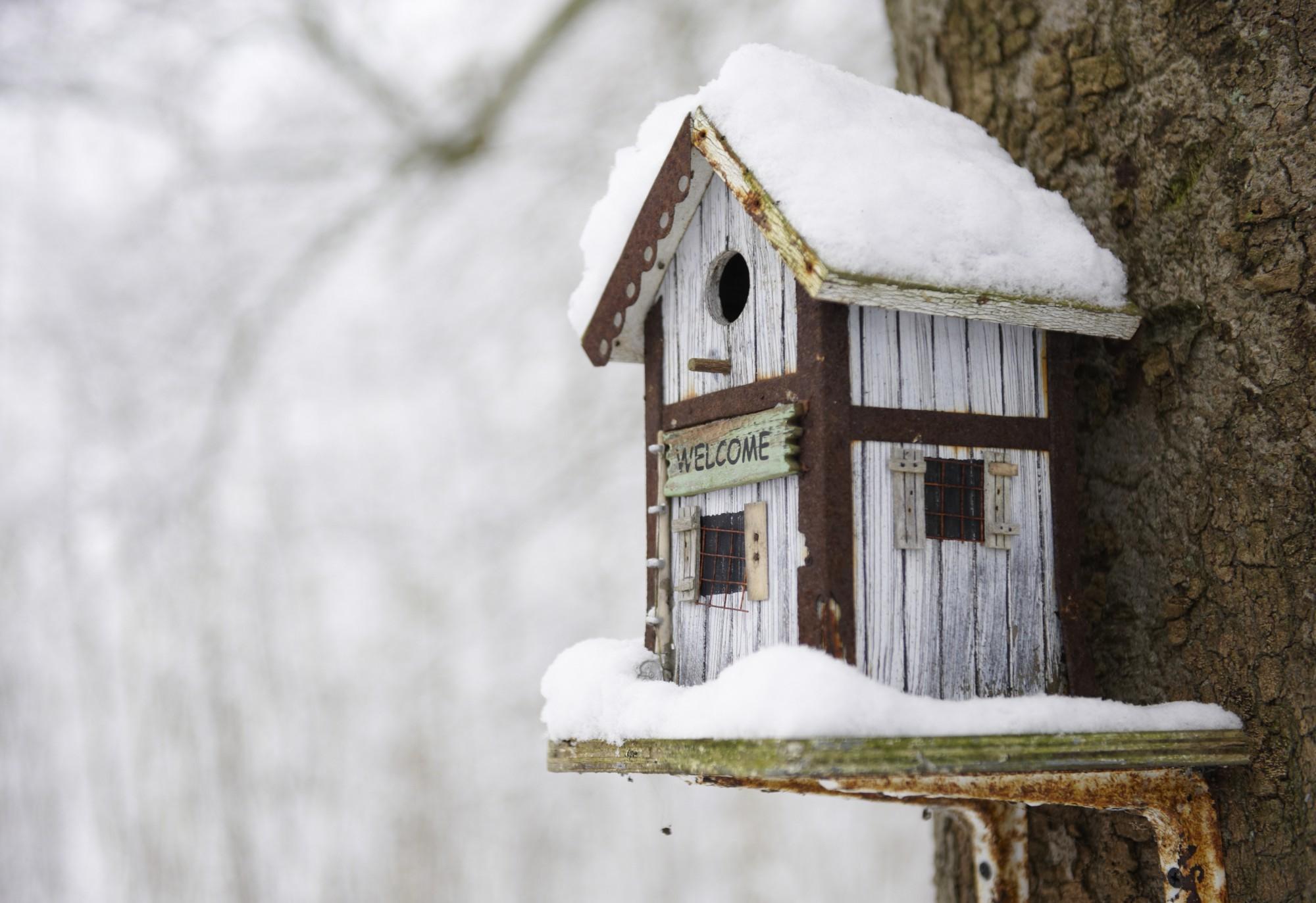 9. Consejos prácticos para aislarte del frío (y no gastar en calefacción)