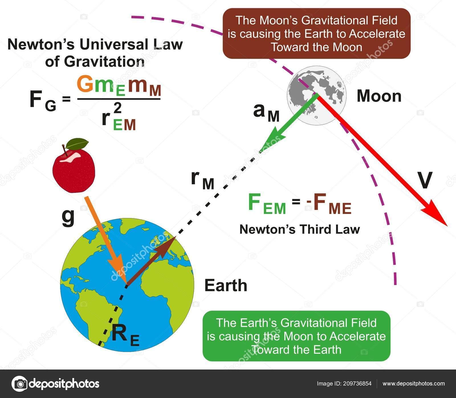 Legge Gravitazione Universale Newton Infographic Diagramma