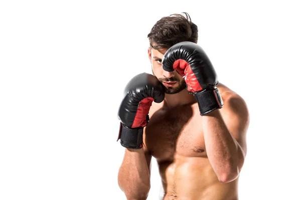 ᐈ Боксер фото, фотографии боксер человек | скачать на ...