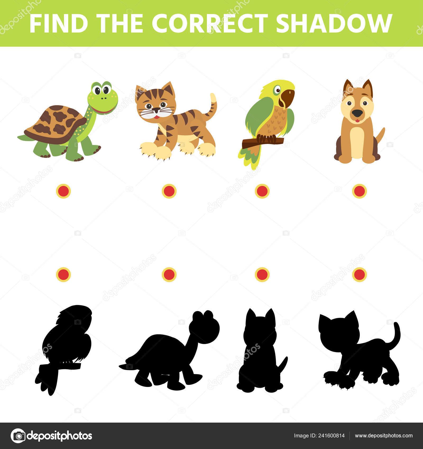 Kinder Schatten Matching Spiel Finden Sie Den Richtigen