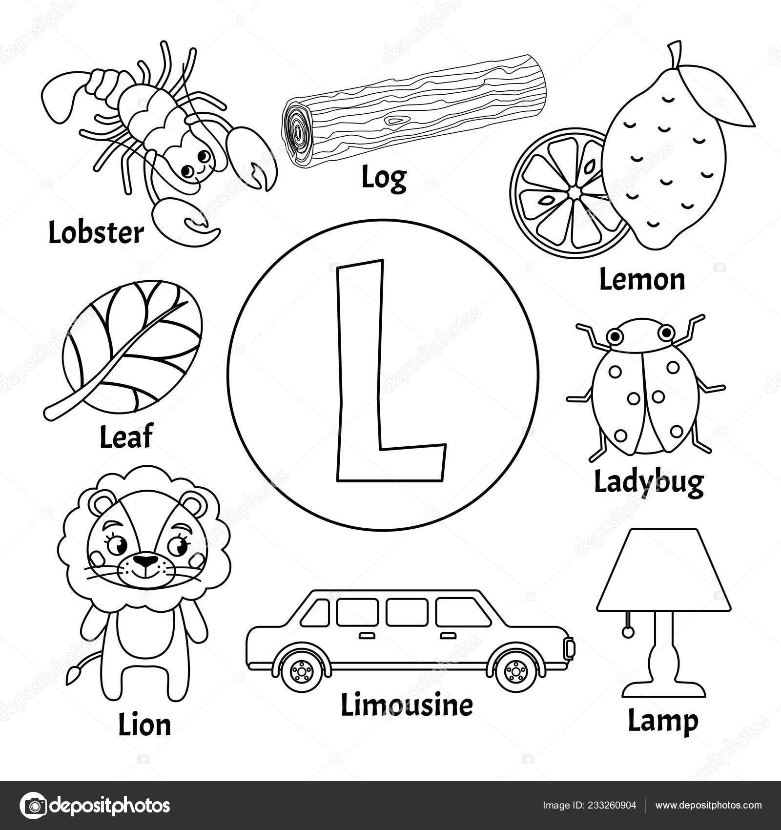 Alfabeto Animal Ninos Lindos Vector Letra Conjunto