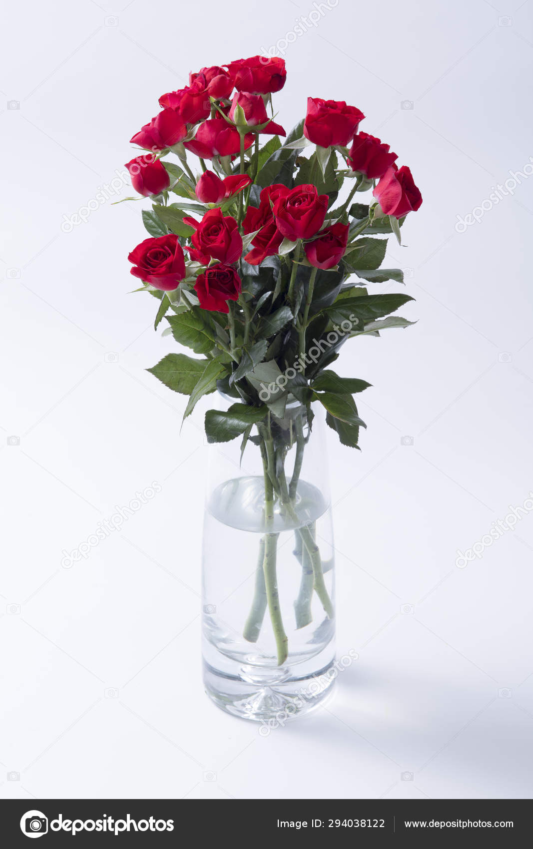 Beautiful Bouquet Red Roses Glass Vase Isolated White