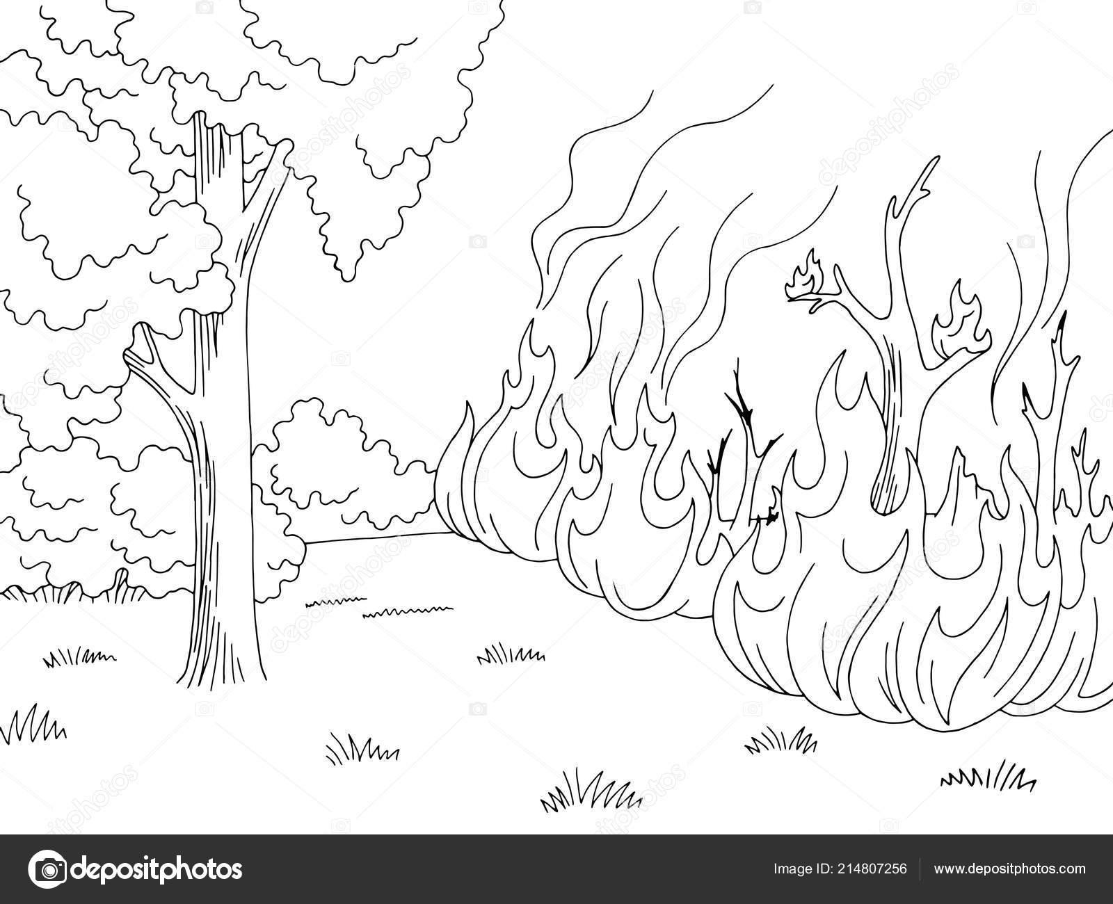 Dibujos Para Colorear De Incendios Forestales Dibujos Para