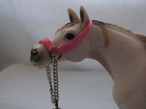 Head Collar closeup