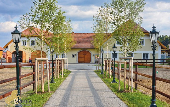 A beautiful horse property for sale in Austria