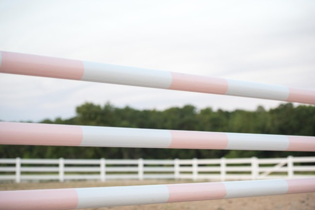 picture perfect pink jumps for equestrians