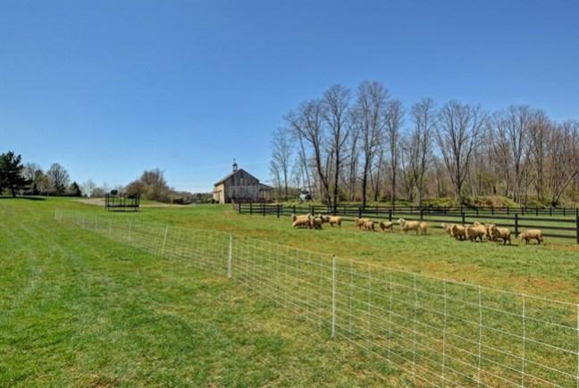 paddocks and barn