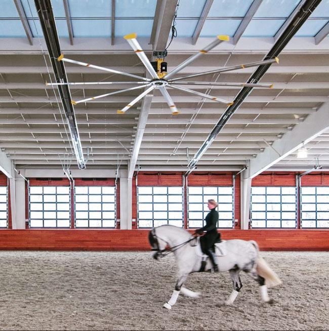 Indoor Arenas: Blackburn Architects Share 5 Design Tips
