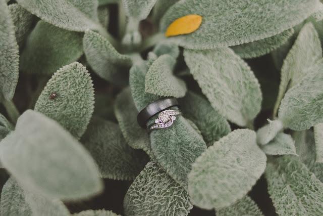 Utah-Wedding-Photographer-Stacey-Hansen-Photography-283529